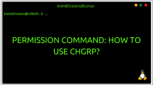 Read more about the article Permission Command: How to use chgrp?