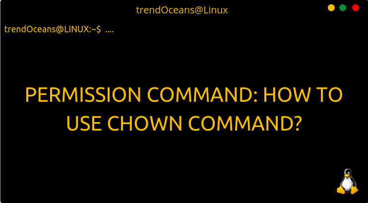 Permission Command: How to use chown command?