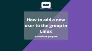 How to add a new user to the group in Linux