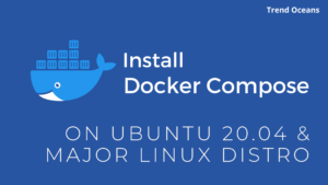 Read more about the article How to Get Install Docker Compose On Ubuntu 20.04 LTS