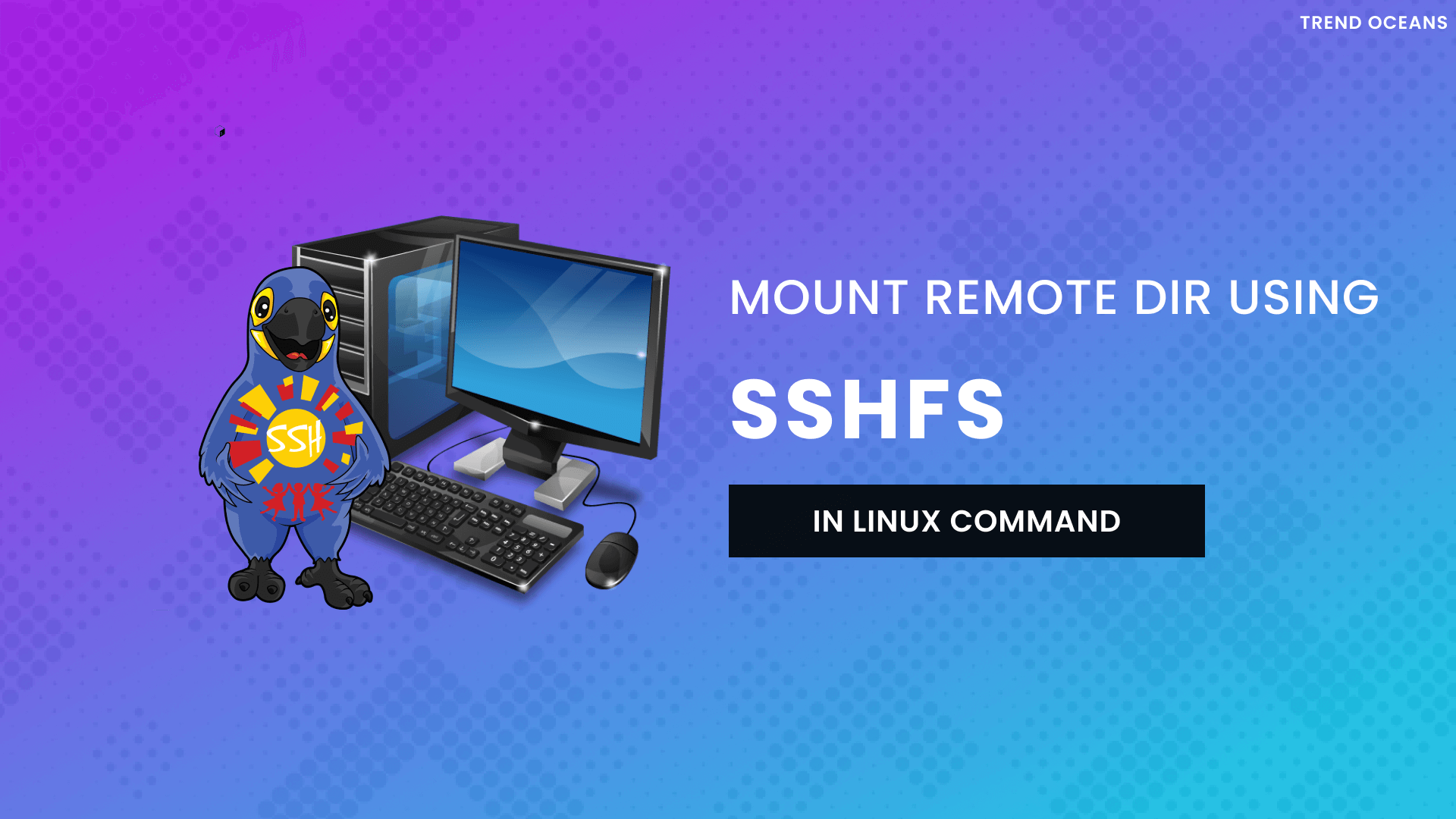 Read more about the article SSHFS Command to Mount Remote File Systems Over SSH