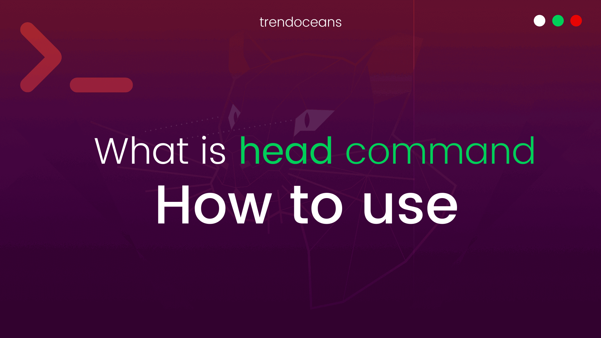 How to use head command in Linux with Example